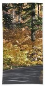 Road To Autumn Hand Towel
