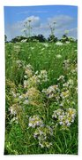 Roadside Bouquet Of Wildflowers In Mchenry County Bath Towel