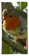 Robin In A Tree Bath Towel