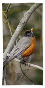 Robin In Tree Bath Towel