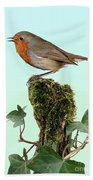 Robin Singing On Ivy-covered Stump Bath Towel