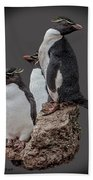 Rockhopper Penguins Bath Towel by Larry Linton