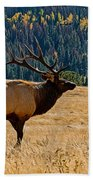 Rocky Mountain Bull Elk Bath Towel