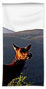 Rocky Mountain Elk Vi Bath Towel