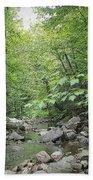 Rocky River In Green Bath Towel