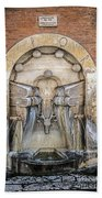 Roman Books Bath Towel