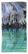 Roots Bath Towel