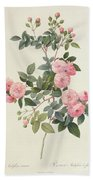 Rosa Multiflora Carnea Bath Towel