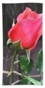 Rose Bud Hand Towel