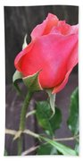Rose Bud Bath Towel