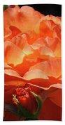 Rose Flower Art Prints Oragne Roses Summer Botanical Baslee Troutman Bath Towel