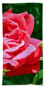 Rose Is Its Name Bath Towel