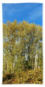 Rosehips And Cottonwoods Bath Towel