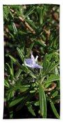 Rosemary Flower Hand Towel