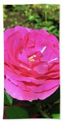 Roses 10 Bath Towel