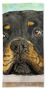 Rottweiler's Sweet Face 2 Hand Towel by Megan Cohen