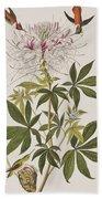 Ruff-necked Hummingbird Bath Towel