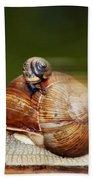 Runaway Snail Bath Towel