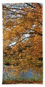 Rural Autumn Country Beauty Bath Towel