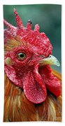 Rusty Rooster Bath Towel