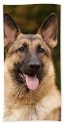 Sable German Shepherd Bath Towel