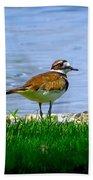 Sad Bird Near Pond Bath Towel