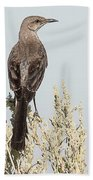 Sage Thrasher On Perch Bath Towel