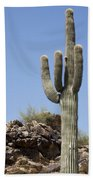Saguaro 3 Bath Towel