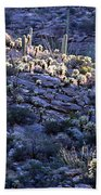 Saguaro Sunrise Bath Towel