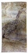Saharan Rock Painting Bath Towel