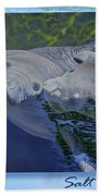 Salt Water Ballet - Manatees - 2 Bath Towel