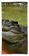 Saltwater Crocodile By Kaye Menner Bath Towel