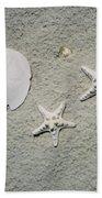 Sand Dollar And Starfish On The Beach Bath Towel