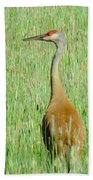 Sand Hill Crane Bath Towel