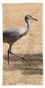 Sand Hill Cranes Bath Towel