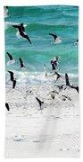 Sandestin Seagulls B Bath Towel
