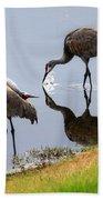 Sandhill Cranes Reflection On Pond Bath Towel