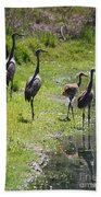 Sandhill Family By The Pond Bath Towel