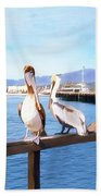 Santa Barbara Pelicans Bath Towel