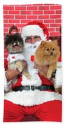 Santa Paws With Two Dogs Bath Towel