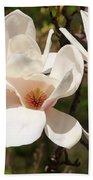 Saucer Magnolia Bath Towel