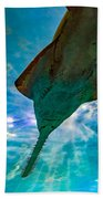Sawfish Bath Towel