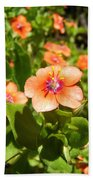 Scarlet Pimpernel Flower Photograph Bath Towel