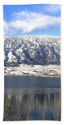 Scenic Wood Lake Bath Towel