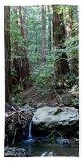 Scents And Subtle Sounds On Mount Tamalpais Bath Towel