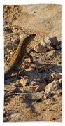 Schreiber's Fringe-fingered Lizard Bath Towel