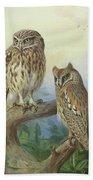 Scops Owl By Thorburn Bath Towel