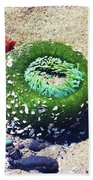 Sea Anemone Bath Towel