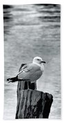 Sea Gull Black And White Bath Towel