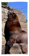 Sea Lion Bath Towel
